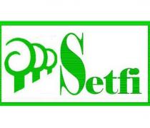 setfi2013